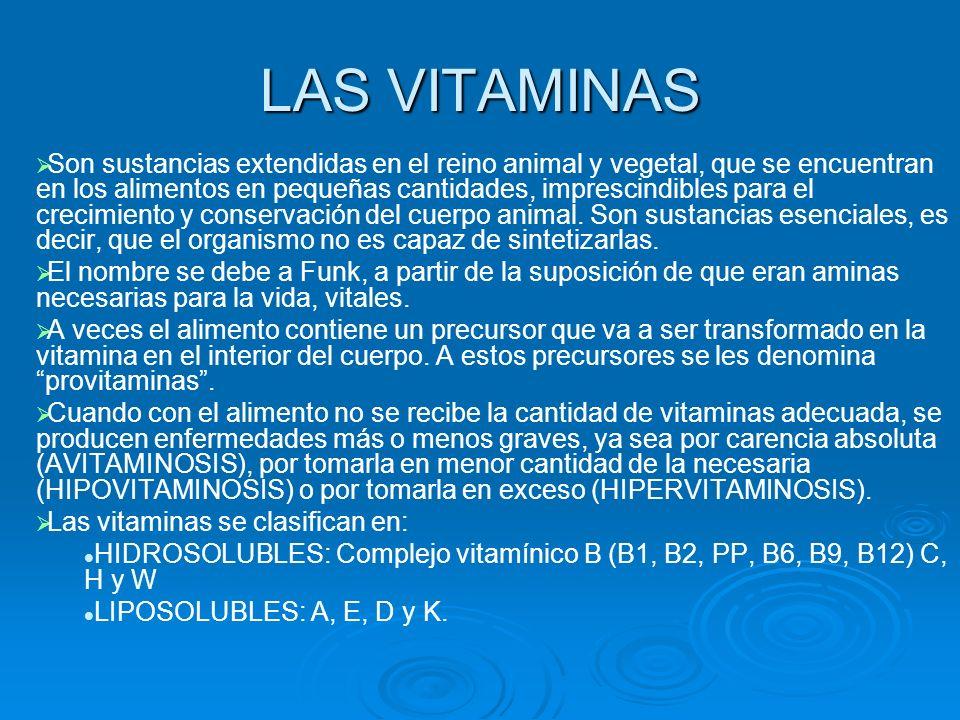 LAS VITAMINAS Son sustancias extendidas en el reino animal y vegetal, que se encuentran en los alimentos en pequeñas cantidades, imprescindibles para