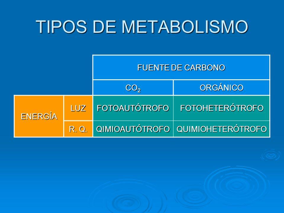 TIPOS DE METABOLISMO FUENTE DE CARBONO CO 2 ORGÁNICO ENERGÍA LUZFOTOAUTÓTROFOFOTOHETERÓTROFO R. Q. QIMIOAUTÓTROFOQUIMIOHETERÓTROFO
