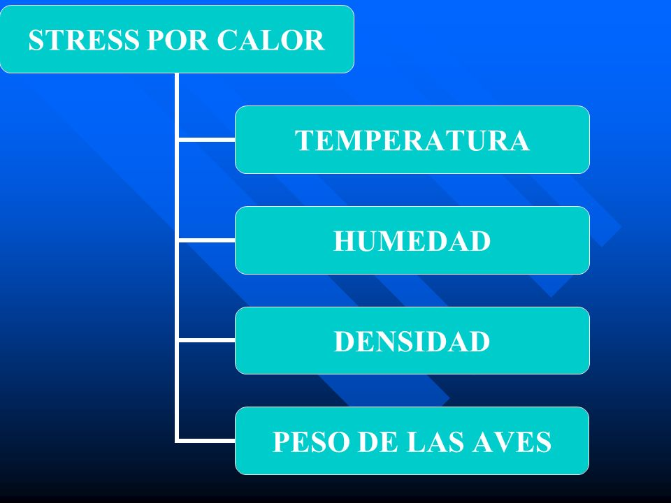Indice de Acaloramiento 29° C + 70% HRA= 99 – FUERA DE RIESGO 29° C + 70% HRA= 99 – FUERA DE RIESGO 29° C + 78% HRA= 107 – UMBRAL IA 29° C + 78% HRA= 107 – UMBRAL IA 35° C + 80% HRA= 115 – MORTANDAD 35° C + 80% HRA= 115 – MORTANDAD