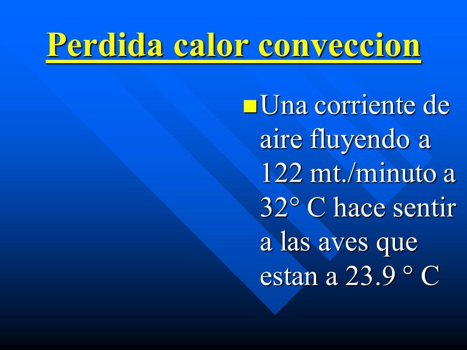 Perdida calor conveccion Una corriente de aire fluyendo a 122 mt./minuto a 32° C hace sentir a las aves que estan a 23.9 ° C
