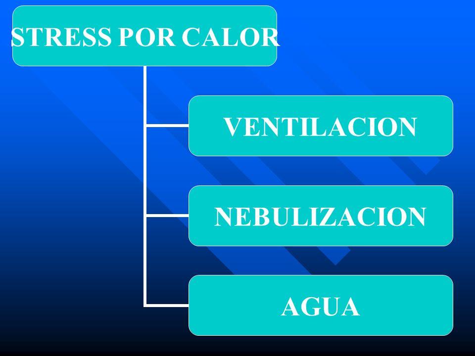 VENTILACION 1-PRESION POSITIVA 1-PRESION POSITIVANATURALVENTILADORES 2- PRESION NEGATIVA 2- PRESION NEGATIVATUNELES