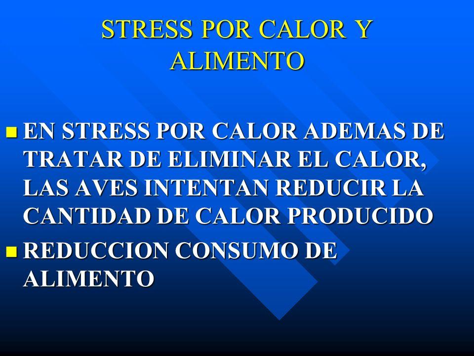 STRESS POR CALOR Y ALIMENTO EN STRESS POR CALOR ADEMAS DE TRATAR DE ELIMINAR EL CALOR, LAS AVES INTENTAN REDUCIR LA CANTIDAD DE CALOR PRODUCIDO EN STR