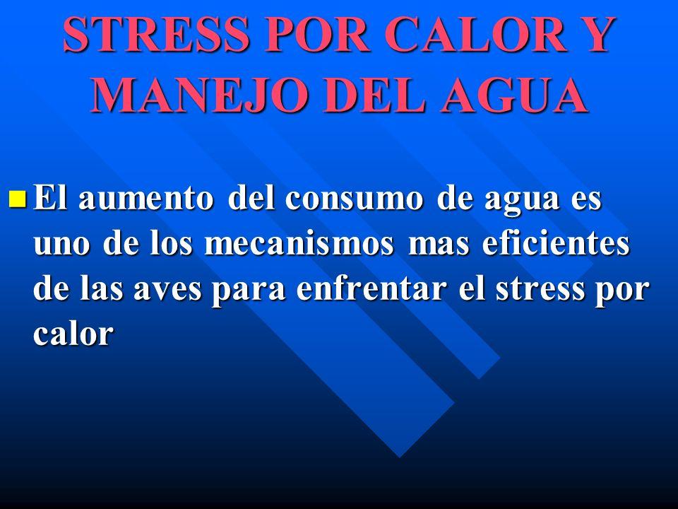 STRESS POR CALOR Y MANEJO DEL AGUA El aumento del consumo de agua es uno de los mecanismos mas eficientes de las aves para enfrentar el stress por cal
