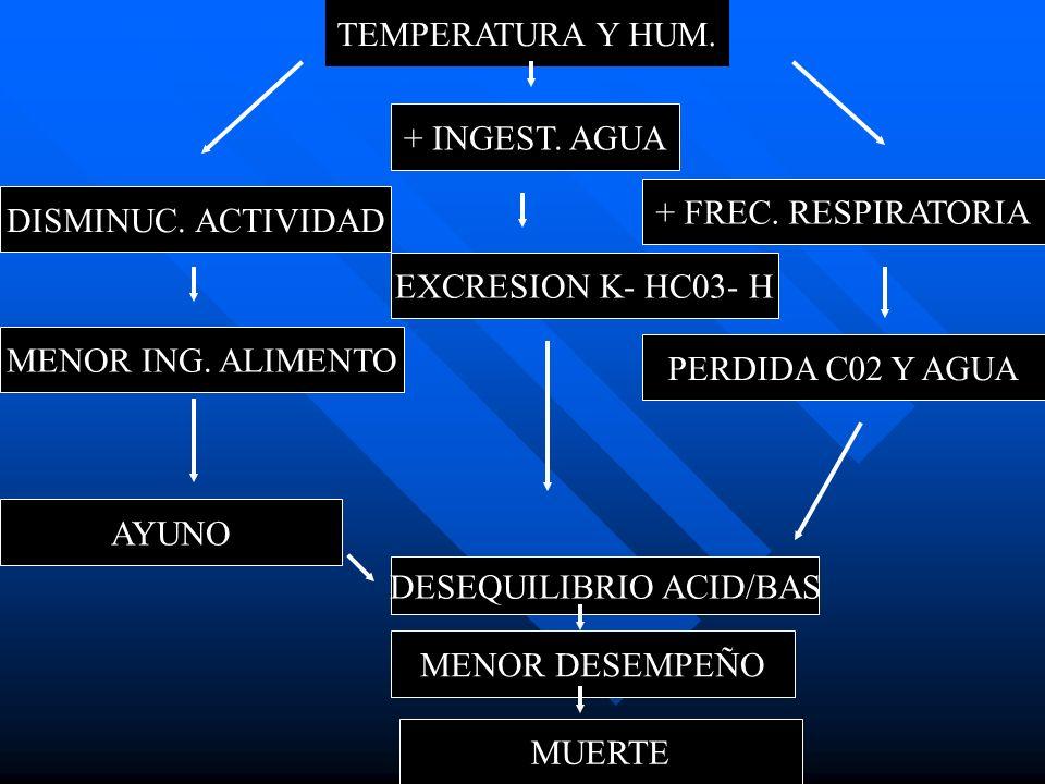 TEMPERATURA Y HUM. DISMINUC. ACTIVIDAD MENOR ING. ALIMENTO AYUNO + INGEST. AGUA EXCRESION K- HC03- H DESEQUILIBRIO ACID/BAS MENOR DESEMPEÑO MUERTE + F