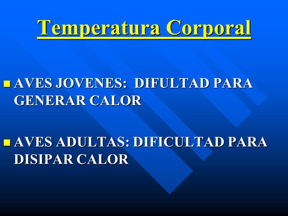 Temperatura Corporal AVES JOVENES: DIFULTAD PARA GENERAR CALOR AVES JOVENES: DIFULTAD PARA GENERAR CALOR AVES ADULTAS: DIFICULTAD PARA DISIPAR CALOR A