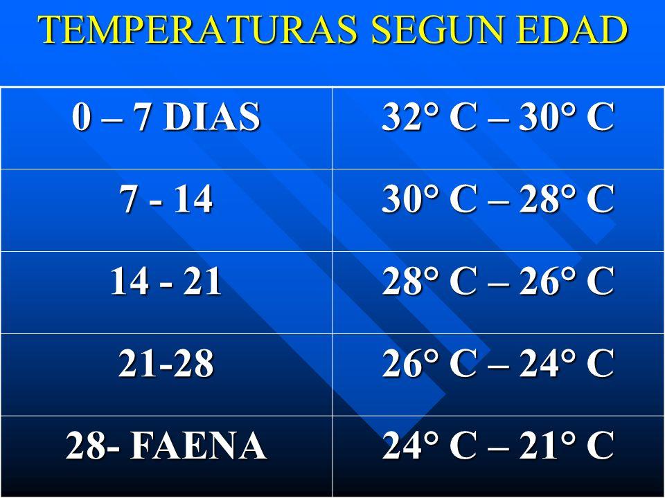 TEMPERATURAS SEGUN EDAD 0 – 7 DIAS 32° C – 30° C 7 - 14 30° C – 28° C 14 - 21 28° C – 26° C 21-28 26° C – 24° C 28- FAENA 24° C – 21° C