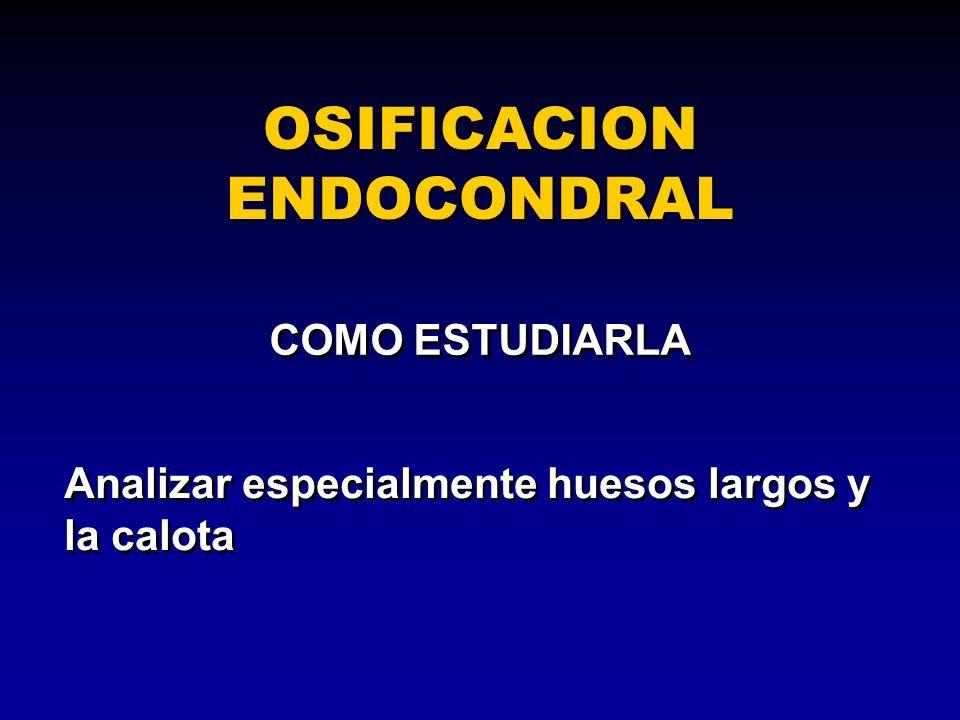 OSIFICACION ENDOCONDRAL COMO ESTUDIARLA Analizar especialmente huesos largos y la calota