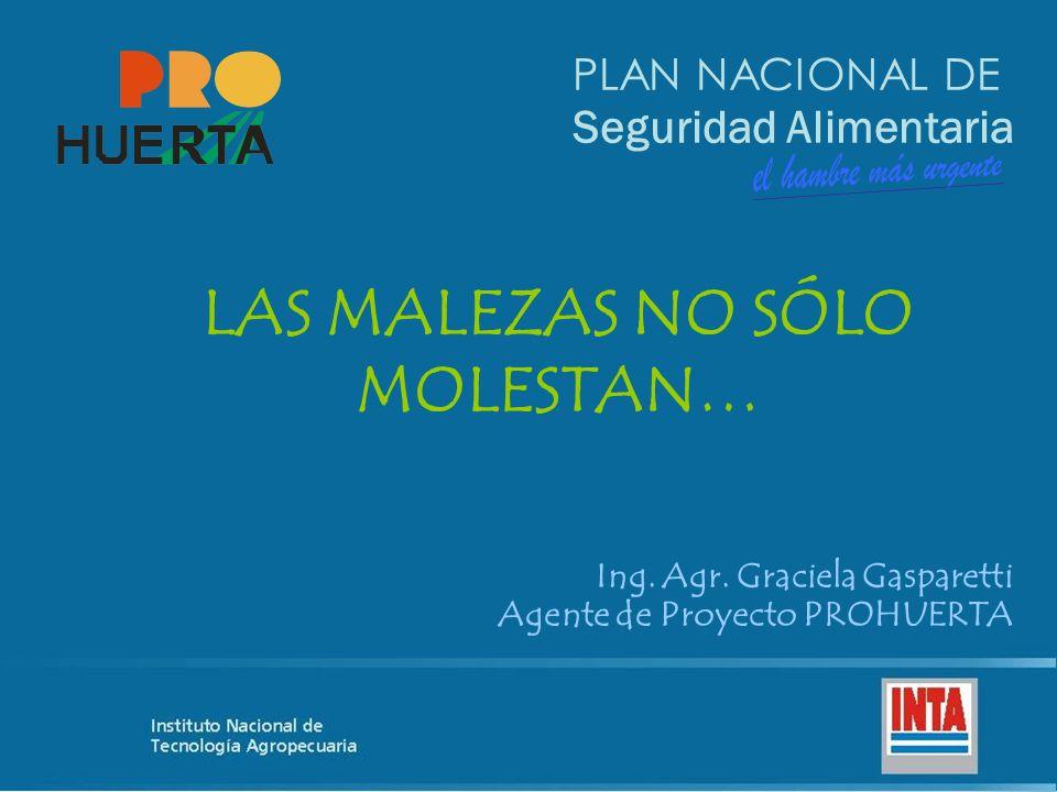 PLAN NACIONAL DE Seguridad Alimentaria LAS MALEZAS NO SÓLO MOLESTAN… Ing.