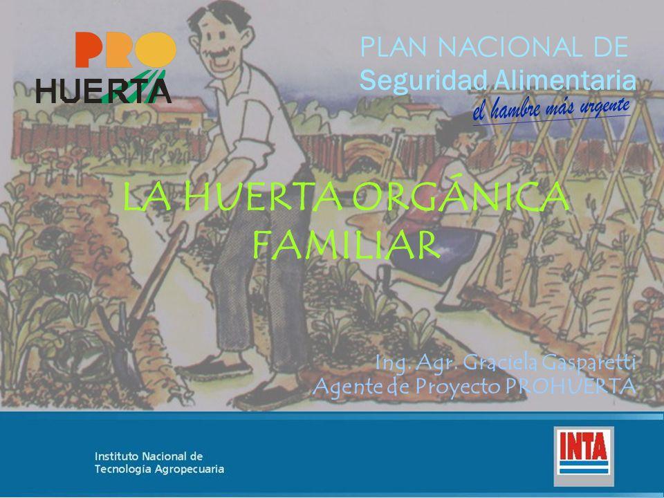 PLAN NACIONAL DE Seguridad Alimentaria Ing. Agr. Graciela Gasparetti Agente de Proyecto PROHUERTA LA HUERTA ORGÁNICA FAMILIAR