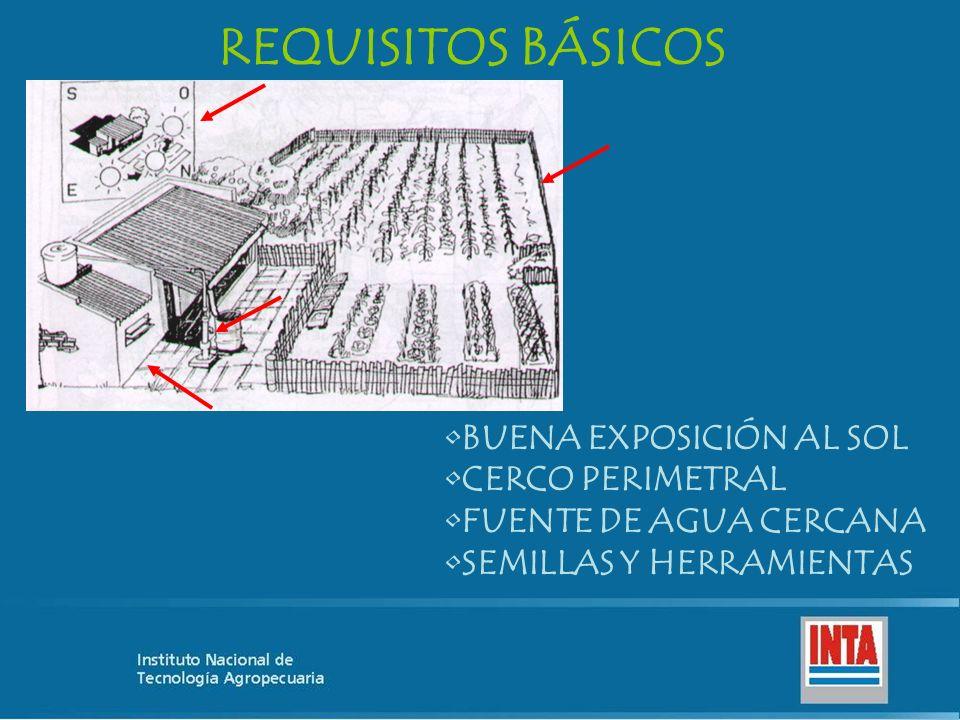 REQUISITOS BÁSICOS BUENA EXPOSICIÓN AL SOL CERCO PERIMETRAL FUENTE DE AGUA CERCANA SEMILLAS Y HERRAMIENTAS