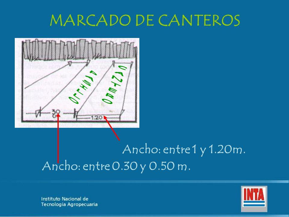 MARCADO DE CANTEROS Ancho: entre 1 y 1.20m. Ancho: entre 0.30 y 0.50 m.