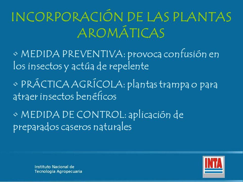 INCORPORACIÓN DE LAS PLANTAS AROMÁTICAS MEDIDA PREVENTIVA: provoca confusión en los insectos y actúa de repelente PRÁCTICA AGRÍCOLA: plantas trampa o