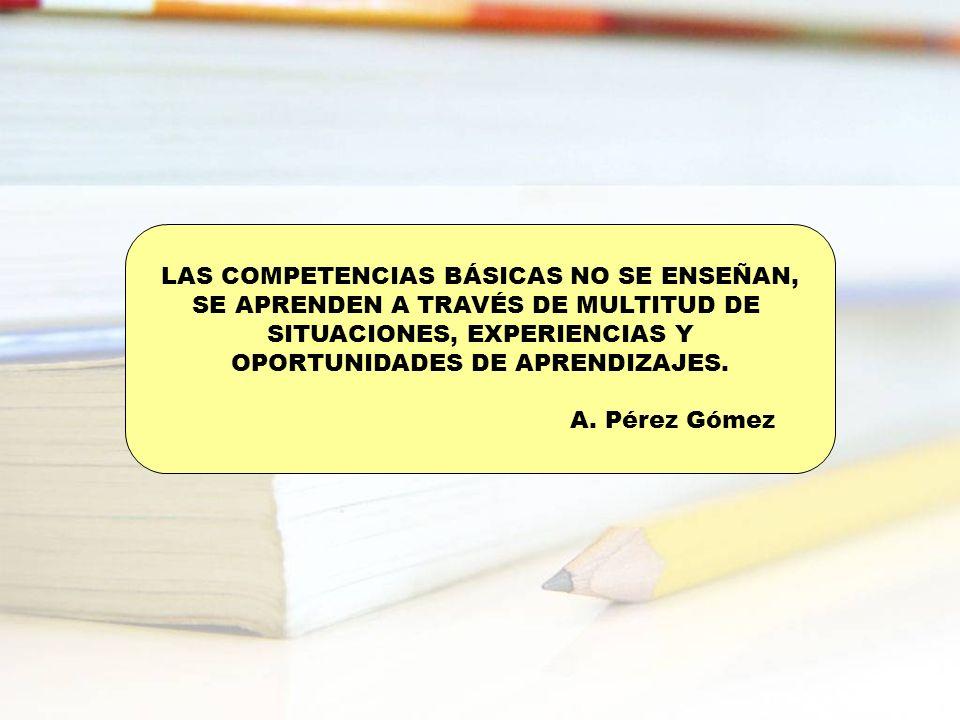 LAS COMPETENCIAS BÁSICAS NO SE ENSEÑAN, SE APRENDEN A TRAVÉS DE MULTITUD DE SITUACIONES, EXPERIENCIAS Y OPORTUNIDADES DE APRENDIZAJES. A. Pérez Gómez