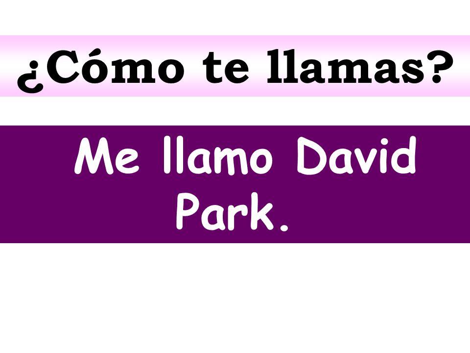 ¿Cómo te llamas? Me llamo David Park.