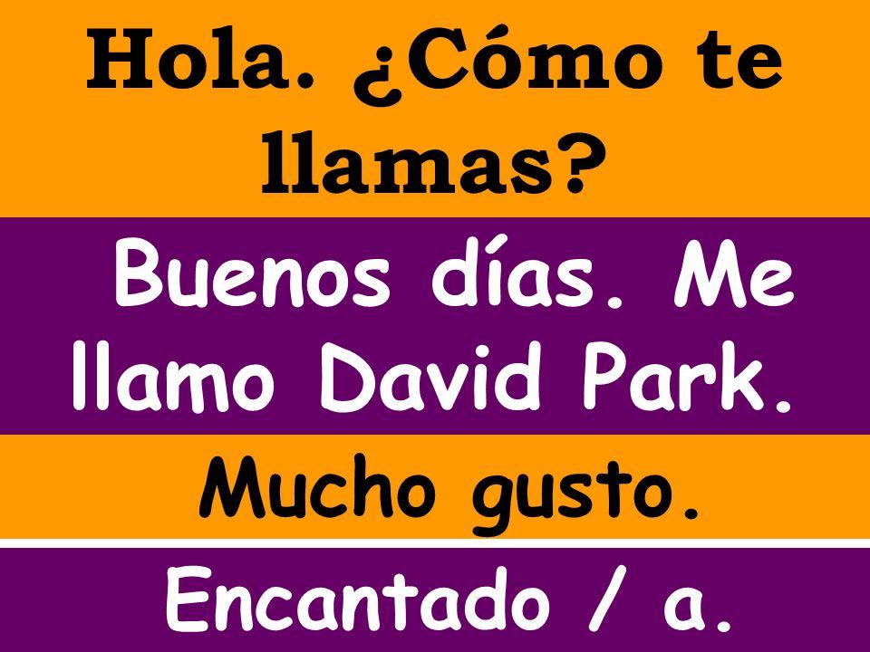 Hola. ¿Cómo te llamas? Buenos días. Me llamo David Park. Mucho gusto. Encantado / a.