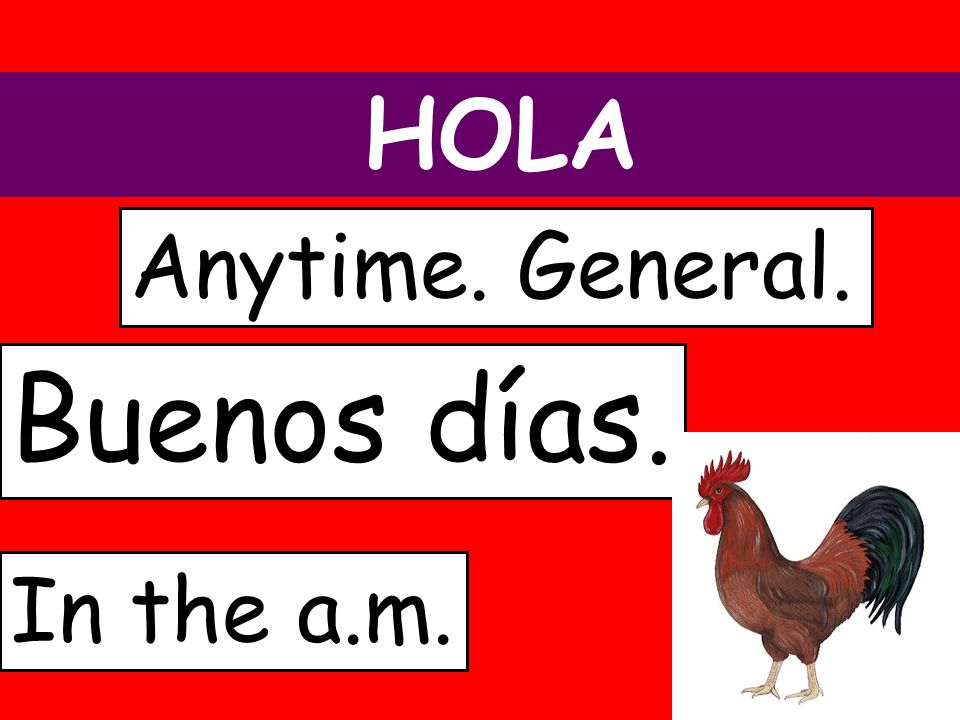 HOLA Buenos días. Anytime. General. In the a.m.