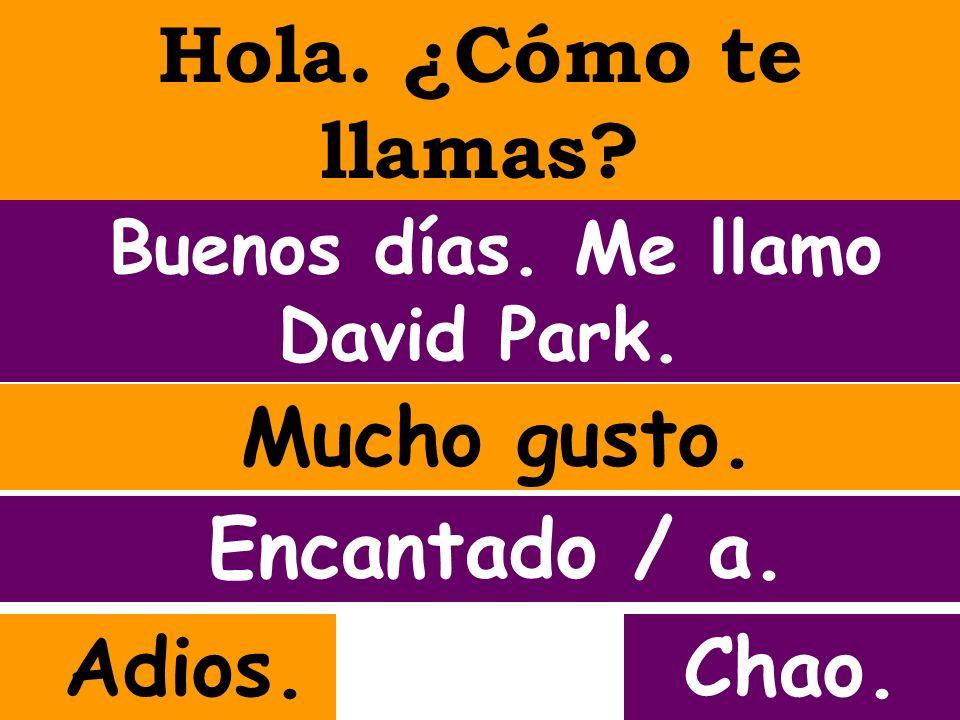 Hola. ¿Cómo te llamas? Buenos días. Me llamo David Park. Mucho gusto. Adios.Chao. Encantado / a.