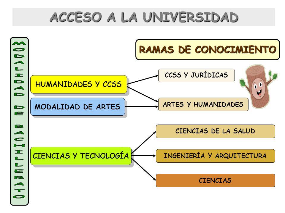 ACCESO A LA UNIVERSIDAD RAMAS DE CONOCIMIENTO ARTES Y HUMANIDADES CCSS Y JURÍDICAS CIENCIAS DE LA SALUD INGENIERÍA Y ARQUITECTURA CIENCIAS HUMANIDADES