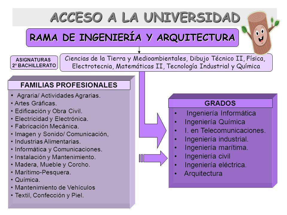 RAMA DE INGENIERÍA Y ARQUITECTURA Ciencias de la Tierra y Medioambientales, Dibujo Técnico II, Física, Electrotecnia, Matemáticas II, Tecnología Indus