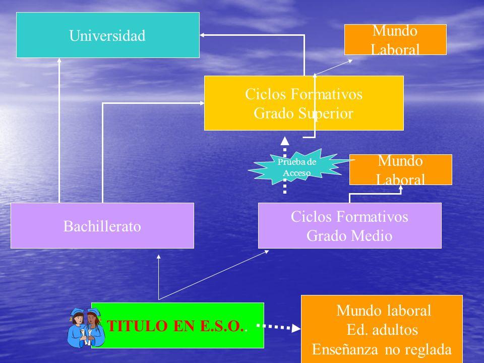 Universidad Mundo Laboral Ciclos Formativos Grado Superior Mundo Laboral Bachillerato Ciclos Formativos Grado Medio TITULO EN E.S.O..