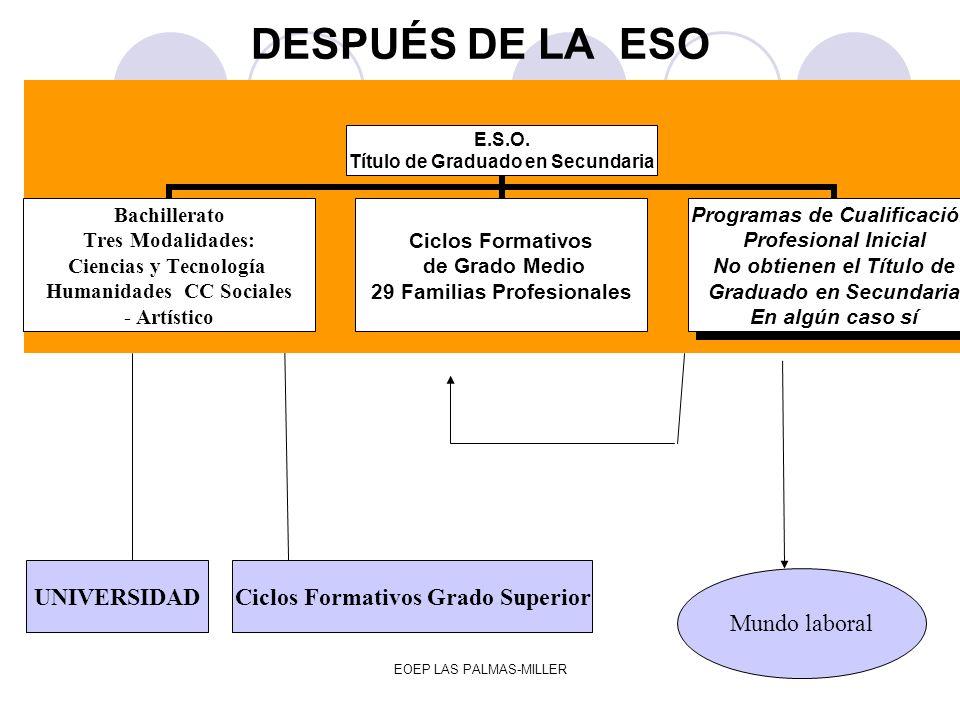 EOEP LAS PALMAS-MILLER DESPUÉS DE LA ESO UNIVERSIDADCiclos Formativos Grado Superior Mundo laboral