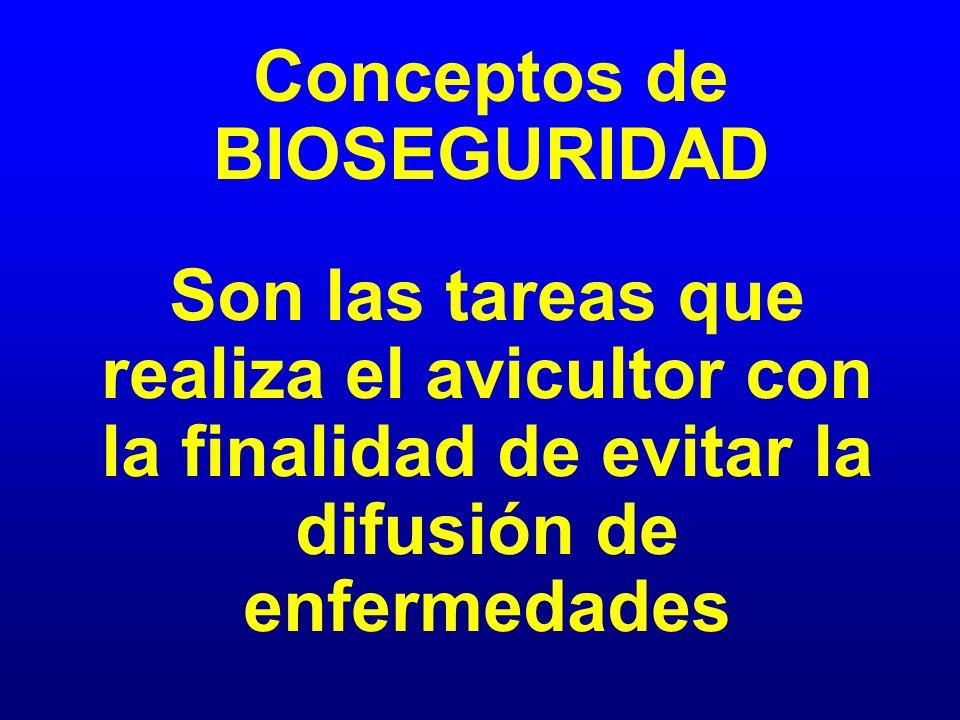 Conceptos de BIOSEGURIDAD Son las tareas que realiza el avicultor con la finalidad de evitar la difusión de enfermedades
