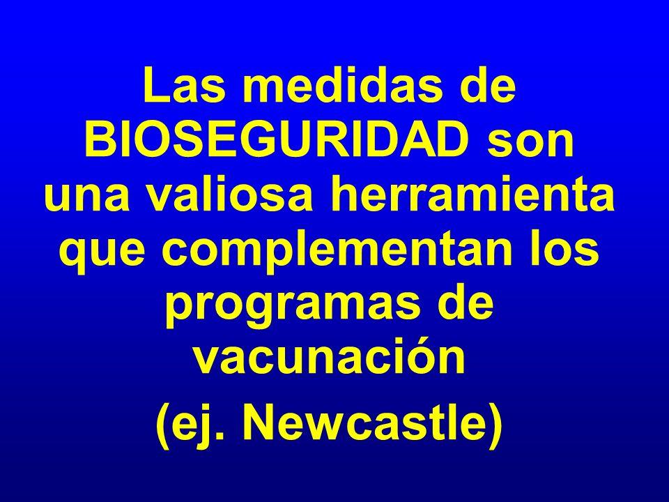 Las medidas de BIOSEGURIDAD son una valiosa herramienta que complementan los programas de vacunación (ej. Newcastle)