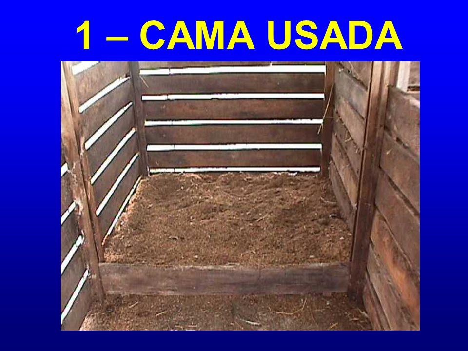 1 – CAMA USADA