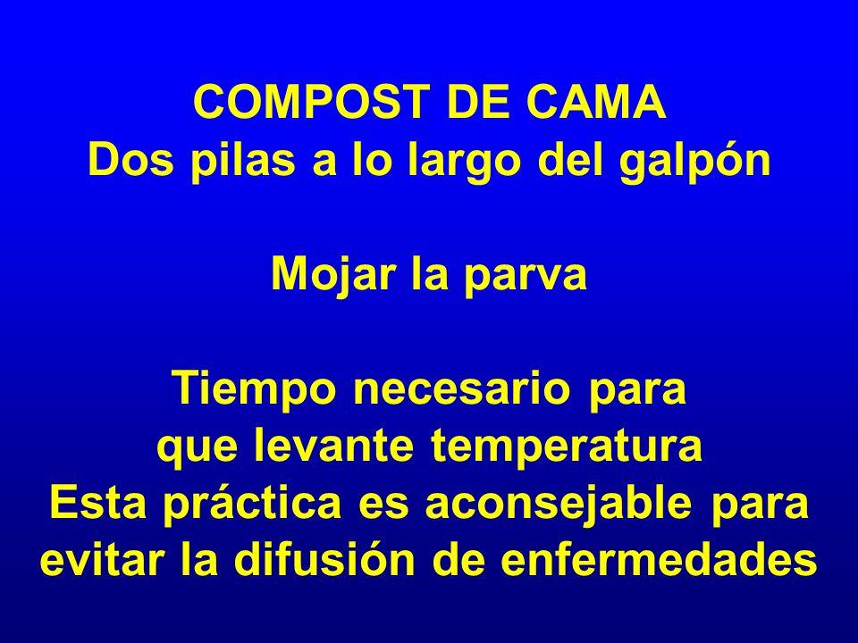 COMPOST DE CAMA Dos pilas a lo largo del galpón Mojar la parva Tiempo necesario para que levante temperatura Esta práctica es aconsejable para evitar