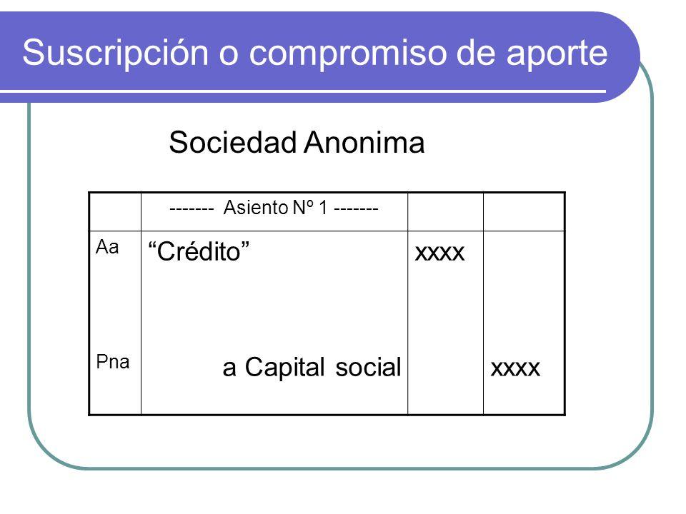 Suscripción o compromiso de aporte Sociedad Anonima ------- Asiento Nº 1 ------- Aa Créditoxxxx Pna a Capital socialxxxx