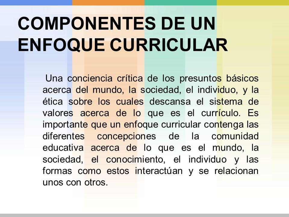FORMA DE TEORIZACIÓN DESCRIPTIVA Intenta identificar la manera real en la que el proceso curricular tiene lugar.