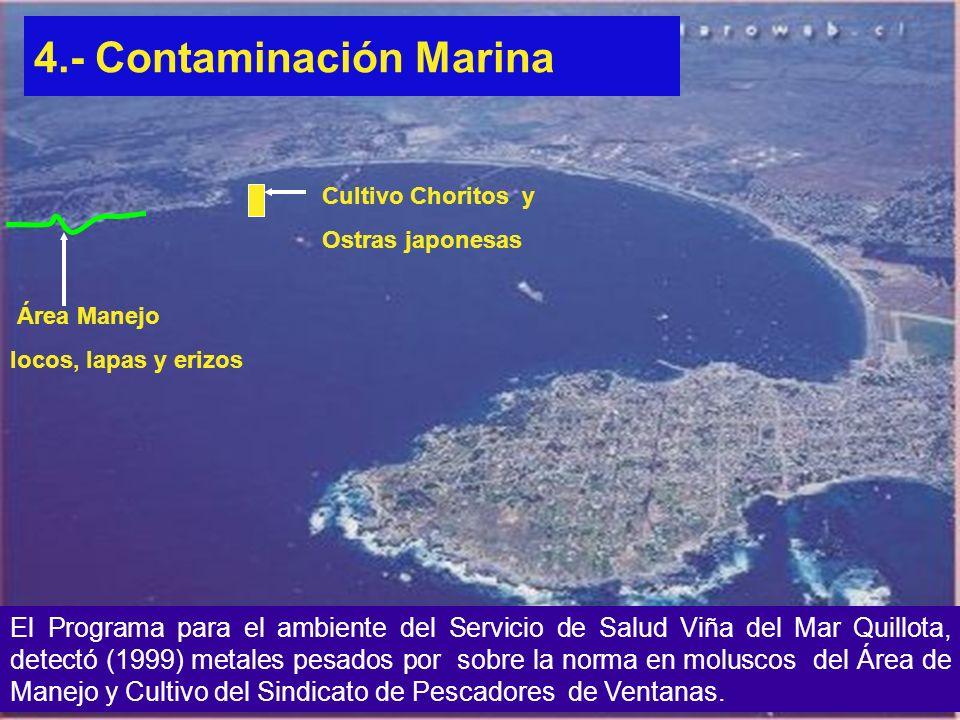4.- Contaminación Marina El Programa para el ambiente del Servicio de Salud Viña del Mar Quillota, detectó (1999) metales pesados por sobre la norma e