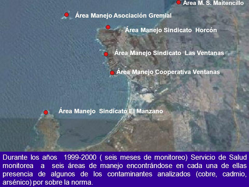 Área M. S. Maitencillo Área Manejo Sindicato Horcón Área Manejo Sindicato Las Ventanas Área Manejo Sindicato El Manzano Área Manejo Cooperativa Ventan
