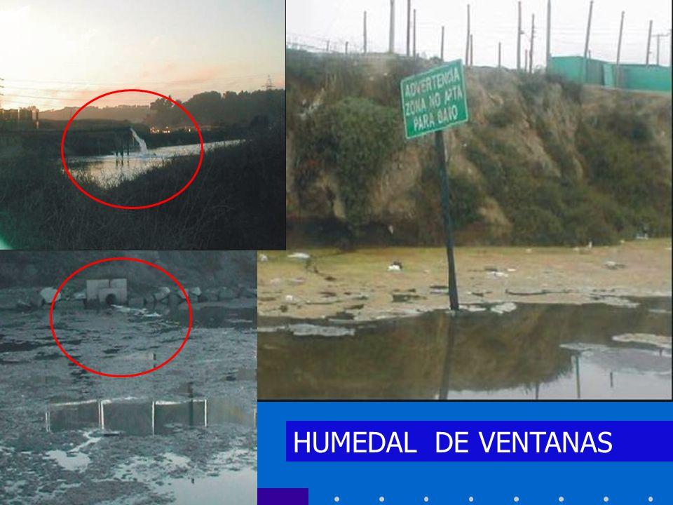 HUMEDAL DE VENTANAS