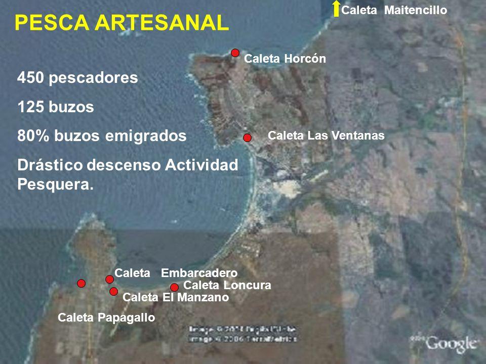 3.- Se constata degradación de la capacidad de regeneración del ecosistema de la zona (daños en la riqueza y diversidad de la flora de la zona).