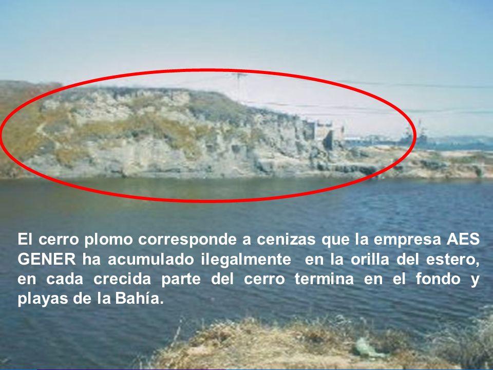 El cerro plomo corresponde a cenizas que la empresa AES GENER ha acumulado ilegalmente en la orilla del estero, en cada crecida parte del cerro termin