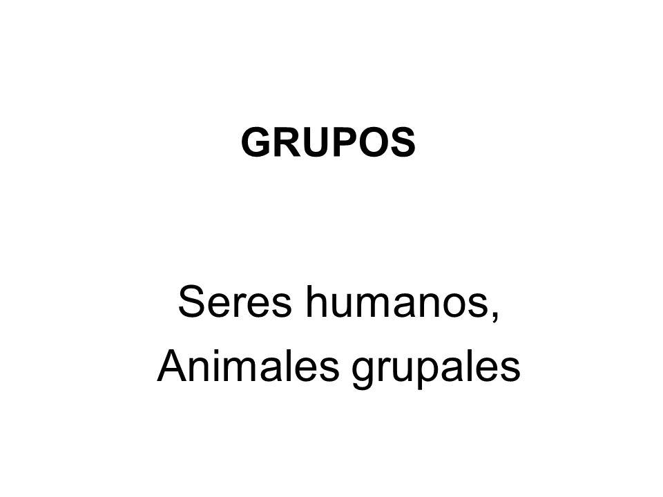 GRUPOS Seres humanos, Animales grupales