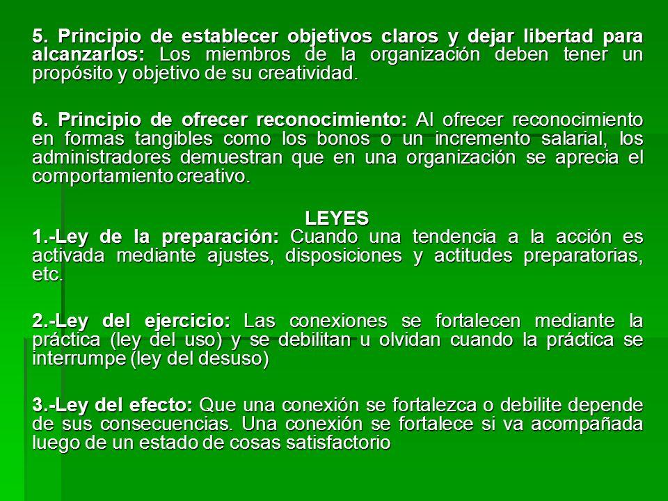 5. Principio de establecer objetivos claros y dejar libertad para alcanzarlos: Los miembros de la organización deben tener un propósito y objetivo de