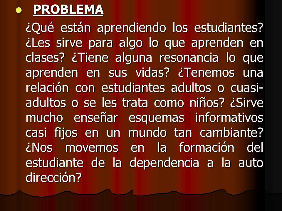 PROBLEMA PROBLEMA ¿Qué están aprendiendo los estudiantes? ¿Les sirve para algo lo que aprenden en clases? ¿Tiene alguna resonancia lo que aprenden en