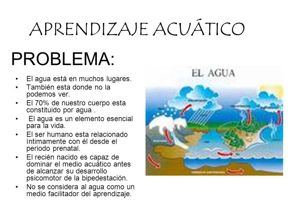 PROBLEMA: El agua está en muchos lugares. También esta donde no la podemos ver. El 70% de nuestro cuerpo esta constituido por agua. El agua es un elem