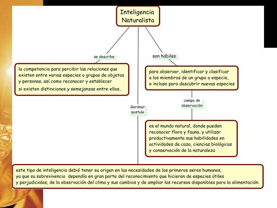 TALLER IDENTIFICACIÓN DE TUS MULTIPLES INTELIGENCIAS PREDOMINANTES –(Aplicación del formato Evaluación de Inteligencias Múltiples) IDENTIFICACIÓN DE TUS MULTIPLES INTELIGENCIAS PREDOMINANTES –(Aplicación del formato Evaluación de Inteligencias Múltiples)
