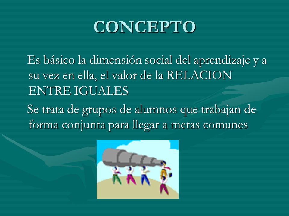 CONCEPTO Es básico la dimensión social del aprendizaje y a su vez en ella, el valor de la RELACION ENTRE IGUALES Es básico la dimensión social del apr