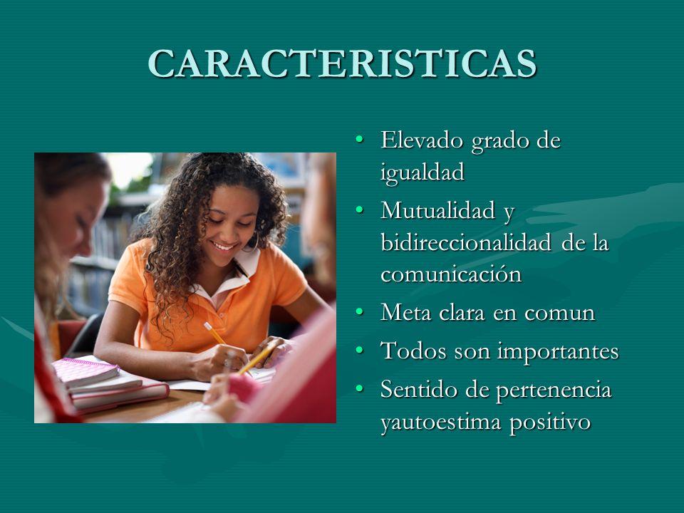 CARACTERISTICAS Elevado grado de igualdad Mutualidad y bidireccionalidad de la comunicación Meta clara en comun Todos son importantes Sentido de perte