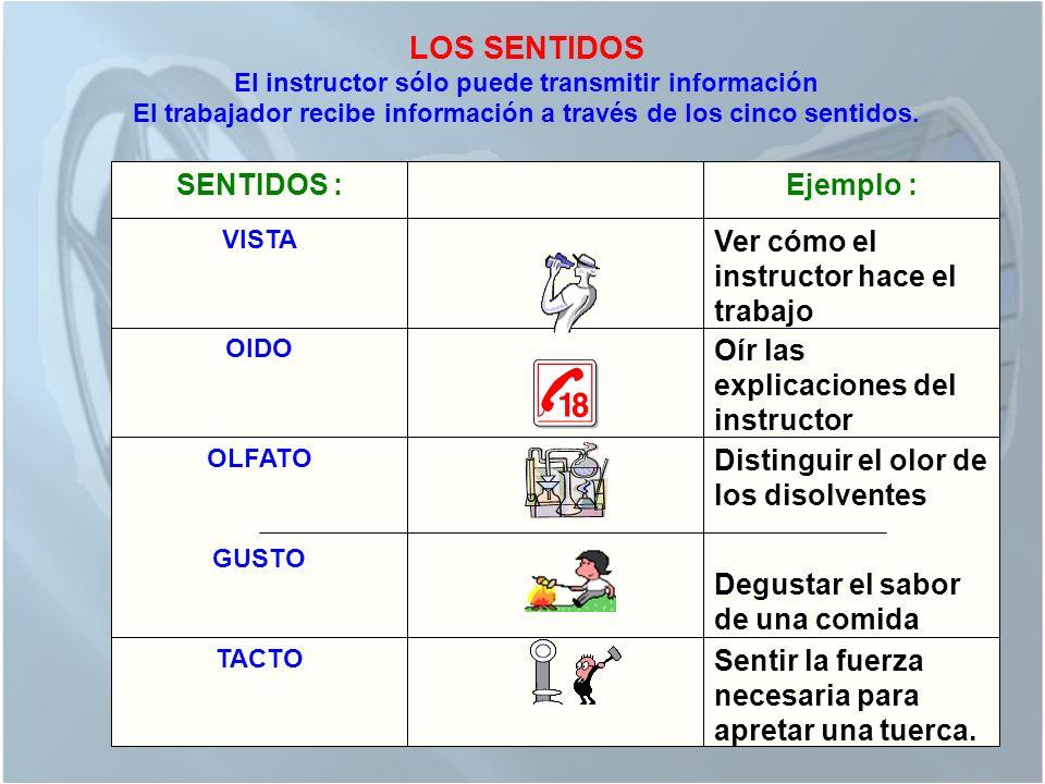 LOS SENTIDOS El instructor sólo puede transmitir información El trabajador recibe información a través de los cinco sentidos.