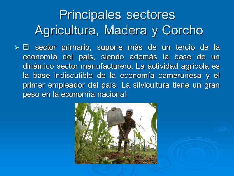 Principales sectores Agricultura, Madera y Corcho El sector primario, supone más de un tercio de la economía del país, siendo además la base de un din