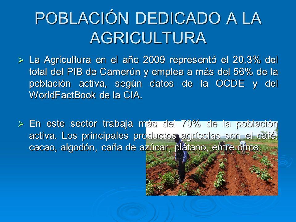POBLACIÓN DEDICADO A LA AGRICULTURA La Agricultura en el año 2009 representó el 20,3% del total del PIB de Camerún y emplea a más del 56% de la poblac