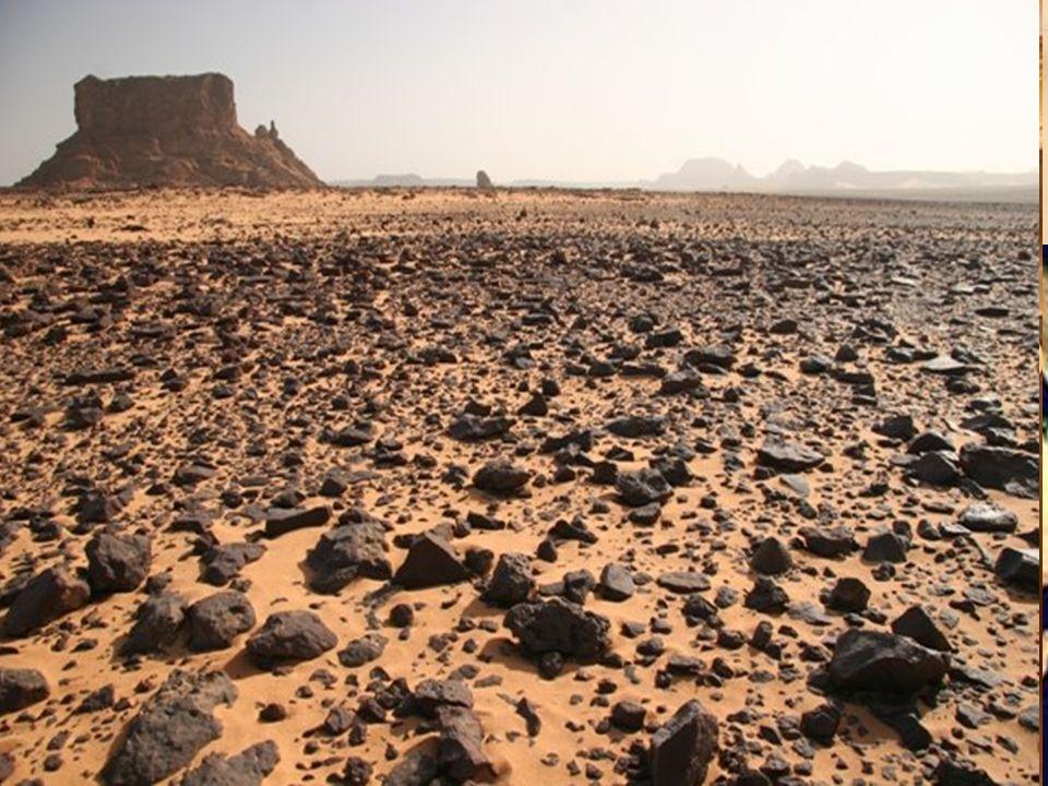 4 Sahara – Desierto desde el O. Atlántico hasta el Mar Rojo – El Nilo: único río importante – wadis
