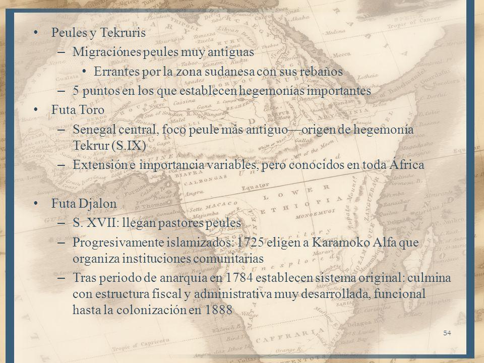 Peules y Tekruris – Migraciónes peules muy antiguas Errantes por la zona sudanesa con sus rebaños – 5 puntos en los que establecen hegemonías importan