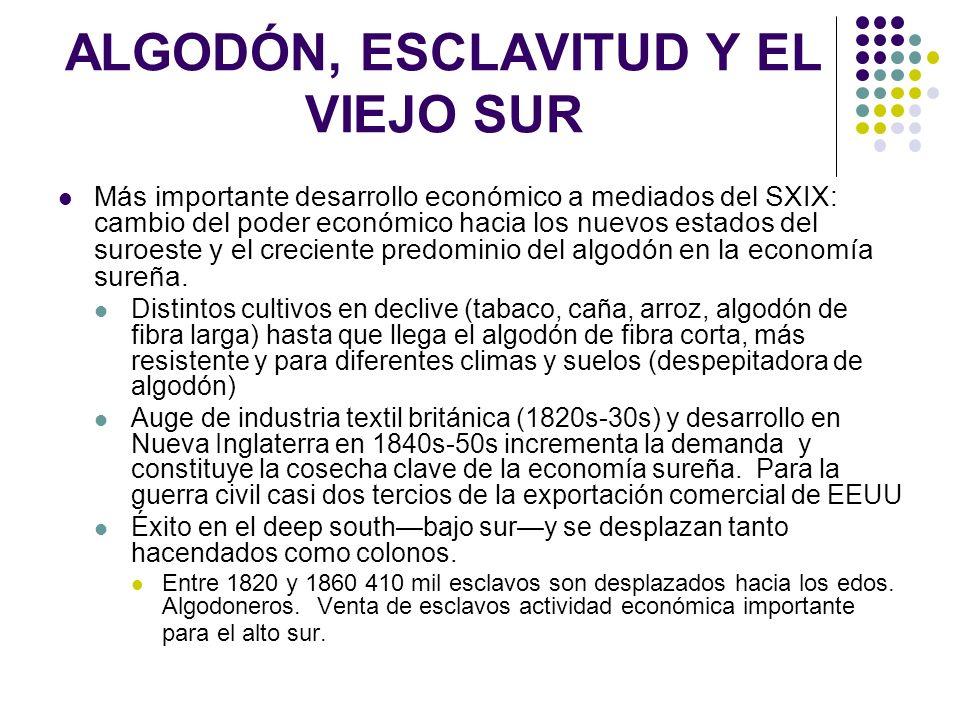 ALGODÓN, ESCLAVITUD Y EL VIEJO SUR Más importante desarrollo económico a mediados del SXIX: cambio del poder económico hacia los nuevos estados del su