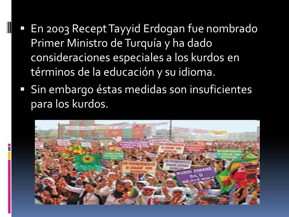 En 2003 Recept Tayyid Erdogan fue nombrado Primer Ministro de Turquía y ha dado consideraciones especiales a los kurdos en términos de la educación y